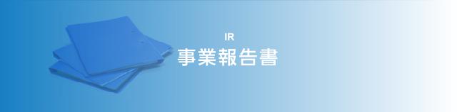 IR 事業報告書