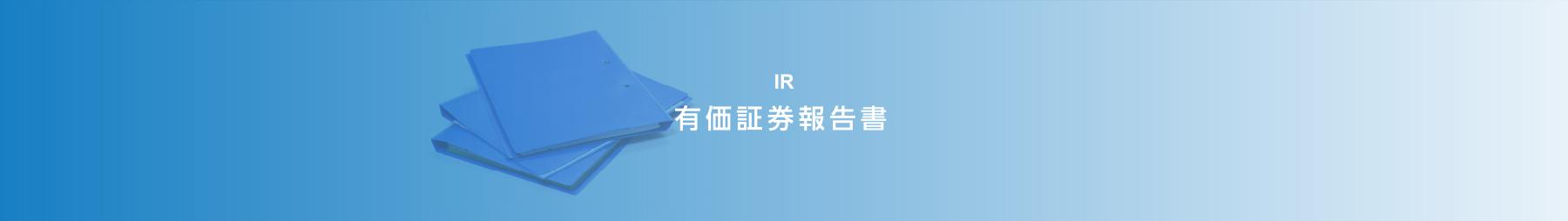 IR 有価証券報告書
